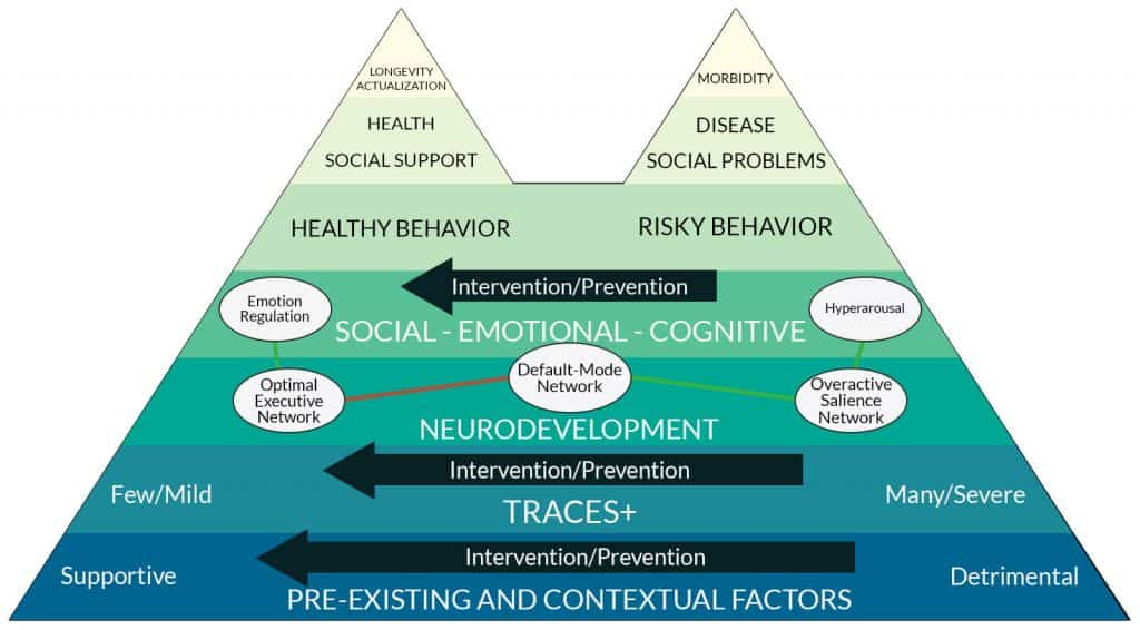 ACES Pyramid Updated - PTSD and Trauma Therapy Fort Lauderdale